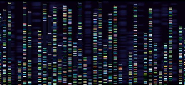 genomics3.jpg