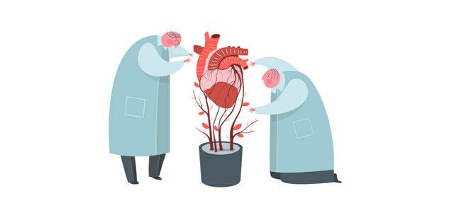 biomaterial research .jpg