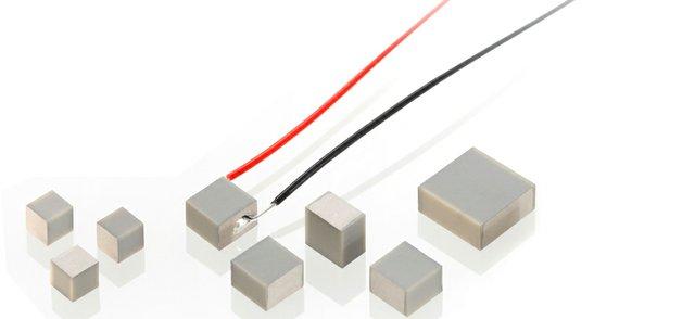 PI-Ceramic-PICMAChip-Actuators-Micropumps.jpg
