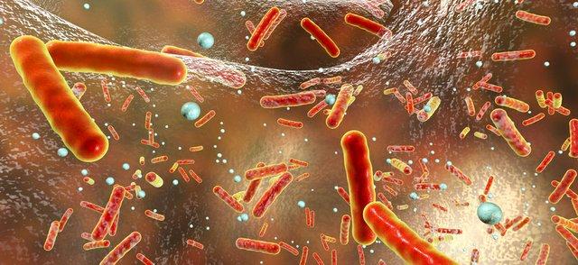 antibiotic resistance.jpg