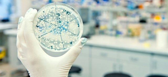 IDS biotech.jpg