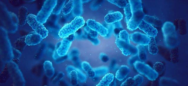 pathogen.jpg