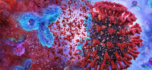 covid antibodies.png