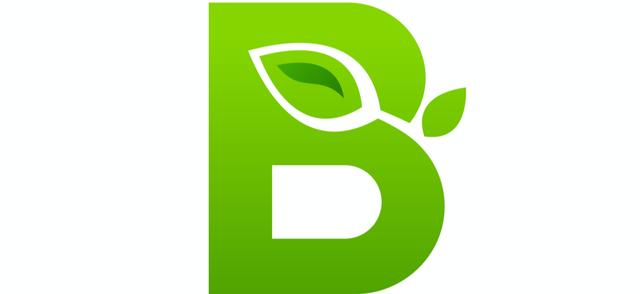 B Corp.png