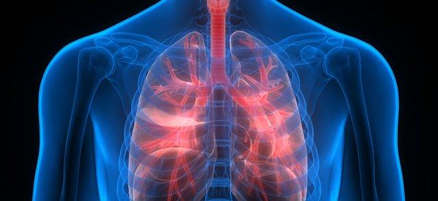 respiratory health.png