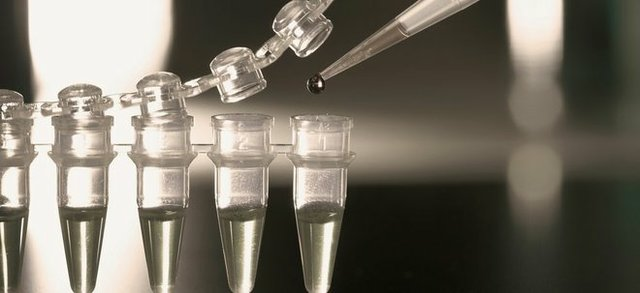 Stem-Cells.jpg